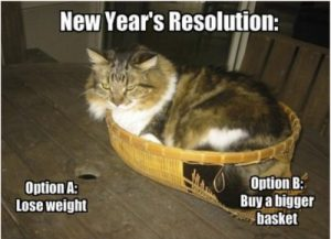 new year's resolution - lose weight